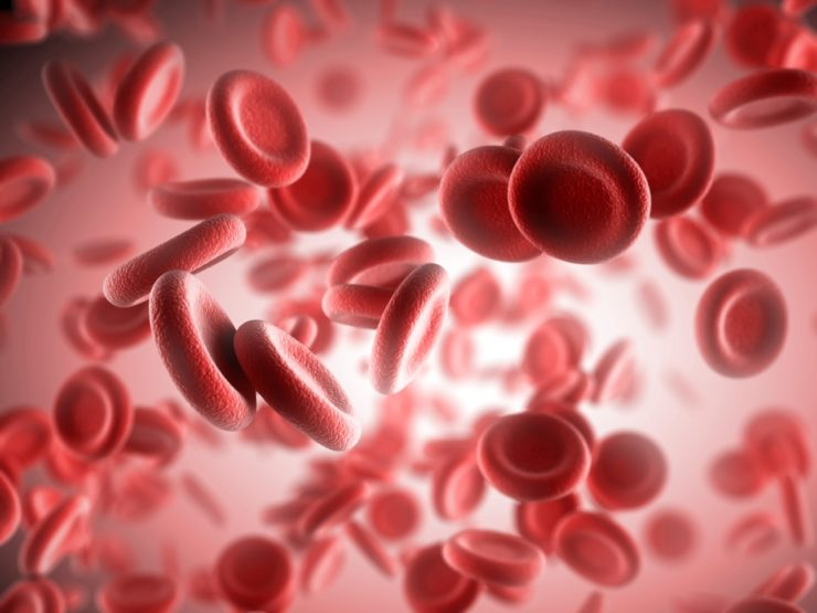 Platelet Rich Plasma (PRP) Therapy - Red Blood Cells