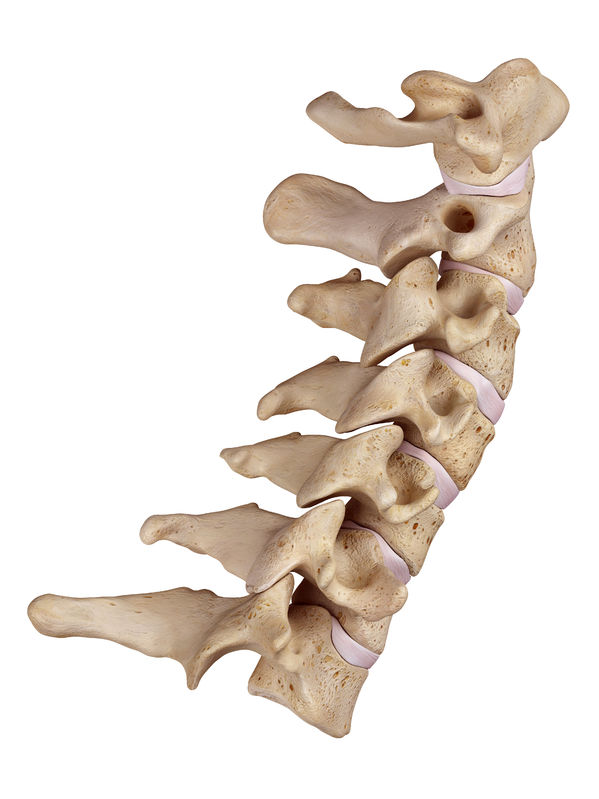 Cervical Spine Treatment at Physio Logic