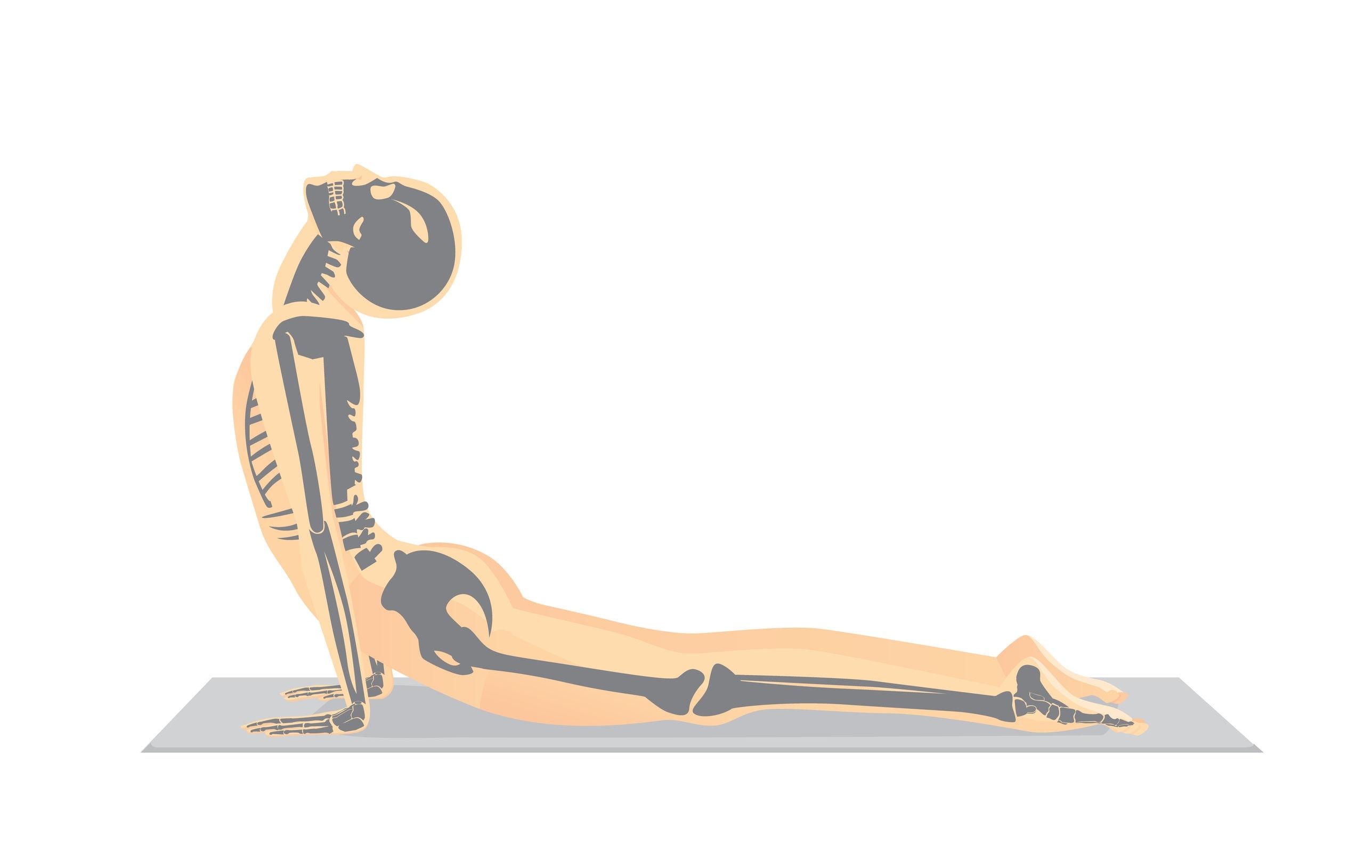 Press Ups McKenzie Method Exercise - McKenzie Method Press Ups Exercise for Back Pain  