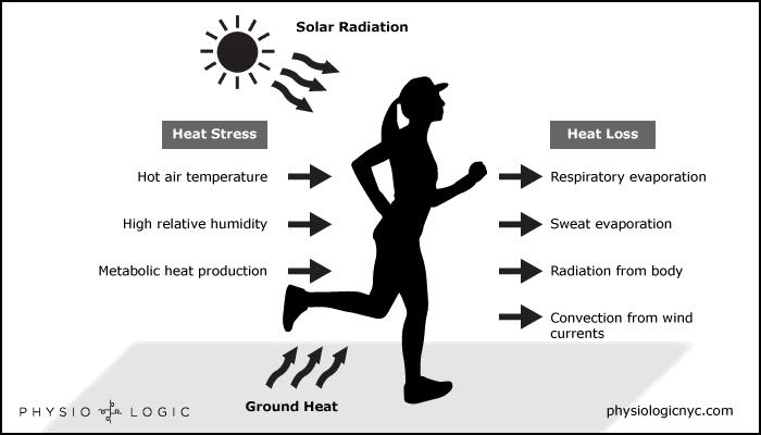 Fluid loss diagram by Physio Logic.