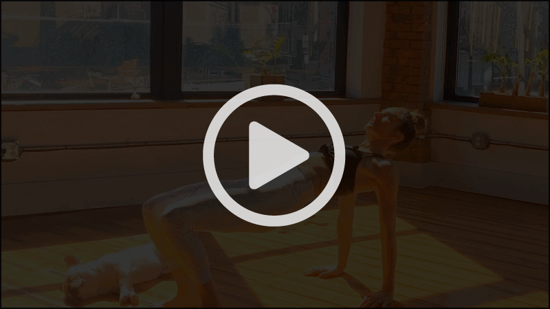 Planks with Lynda Salerno Gehrman, NYC Pilates Instructor in Brooklyn, NY.