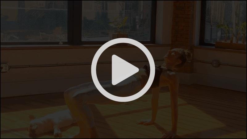Planks with Lynda Salerno Gehrman, NYC Pilates Instructor in Brooklyn, NY.