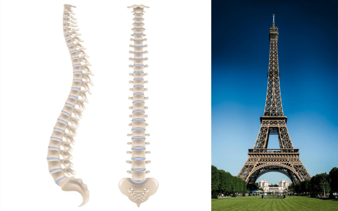 Regenerative Chiropractic Solutions